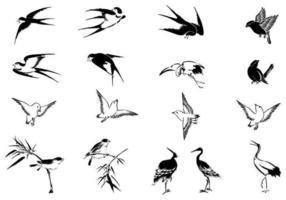 Pacote de vetores de pássaro voador