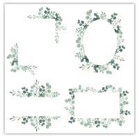Quadro de grinalda em branco com vetor de eucalipto verde