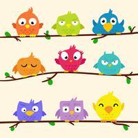 Conjunto de Clipart de pássaro bonito e brilhante vetor