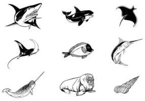 Pacote De Vetores De Animais Marinhos