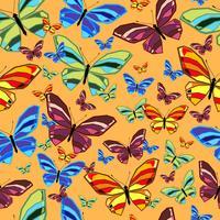 butterfly2 vetor
