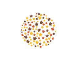 ícones de vetor de logotipo de folha outono