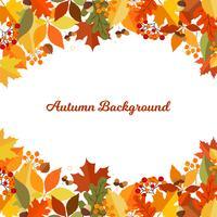 Fundo de Outono com folhas vetor