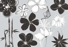 Pacote de vetores Floral esboçado