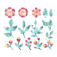 Flores e ramos da aguarela do vetor