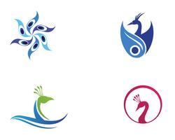 pavão cabeça logotipo e símbolos modelo ícone app vetor