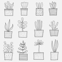 Linha mão desenhada Doodle Cactus Vector Set. Ilustração do vetor de contorno artesanal.