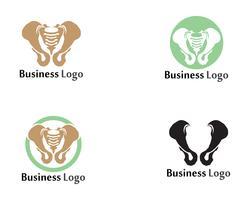 Diagnóstico da coluna símbolo design de ilustração vetorial de modelo de logotipo vetor