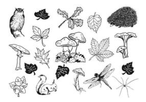 Mão desenhada Natural Fall Vector Pack