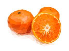 Laranja, uma das frutas auspiciosas chinesas vetor