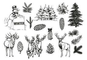 Pacote de vetores de floresta natural e inverno