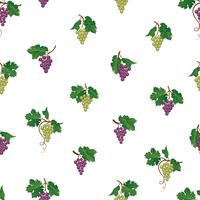 Padrão sem emenda de ramo de uva. Ornamento de fruta natural de jardim de vinho. Fundo de alimentos. vetor
