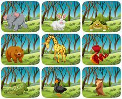 Conjunto de animais em cenas da natureza vetor
