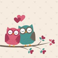 Corujas bonitos no amor vetor