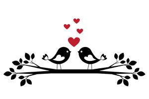 Silhueta de pássaros bonitos no amor vetor