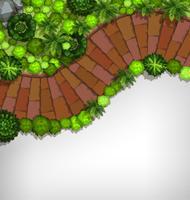 Vista aérea, de, jardim, borda vetor