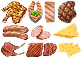 Um conjunto de alimentos proteicos vetor