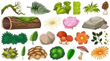 Conjunto de objetos da natureza vetor
