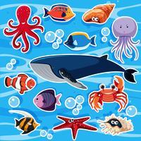 Modelo de etiqueta com muitos animais marinhos vetor