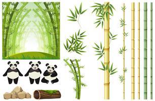 Conjunto de panda e bambu vetor