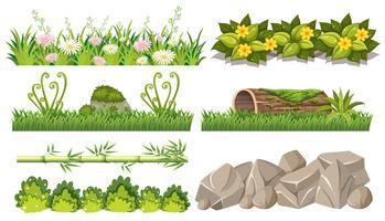 Conjunto de objetos da floresta