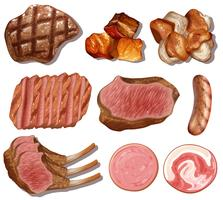 Um conjunto de alimentos ricos em proteínas vetor