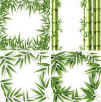Conjunto de molduras de bambu vetor