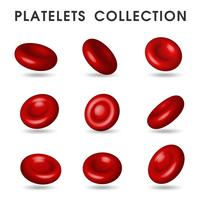 Gráficos plaquetários realistas que circulam nos vasos sanguíneos do corpo humano