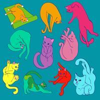 Gatos bonitos brilhantes engraçados praticando ioga