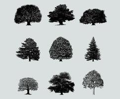 Pacote de vetores de árvore de silhueta