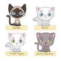 Variação de gatos bonitos vetor