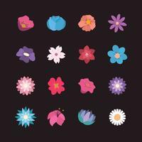Coleção de flores bonitas vetor