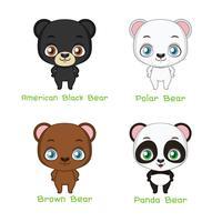 Conjunto de espécies de urso