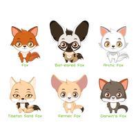 Conjunto de espécies de raposa