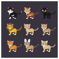 Coleção de nove espécies felinas vetor
