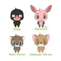 Conjunto de várias espécies de animais mistos vetor