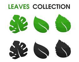 Formas bonitas de folhas e sombras vetor