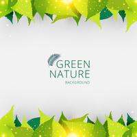 O verde do encabeçamento ou do pé de página do molde deixa o fundo do conceito da natureza. vetor