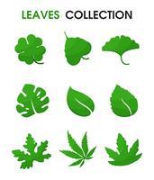 Belas formas de folhas. Ilustração vetorial. vetor