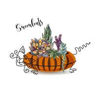 Composição decorativa de suculentas. Em um vaso de flores na forma de um gato listrado. Gráficos com aquarela. Vetor.
