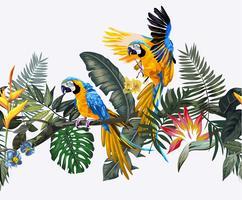 pássaro arara no padrão sem emenda de floresta exótica