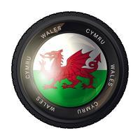 Ícone de bandeira do país de Gales vetor