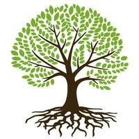 árvore com raízes vetor