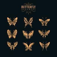 conjunto de ornamento de borboleta vetor