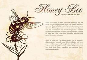 Vetor de fundo de abelha mel