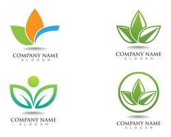 logotipo de natureza verde folha e modelo de vetor