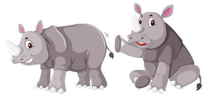 Rinoceronte em fundo branco vetor