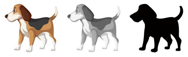 Conjunto de caracteres de cachorro beagle vetor