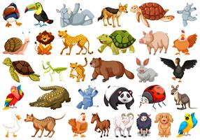 Conjunto de animais selvagens vetor