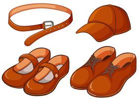 Sapato e cinto castanho vetor